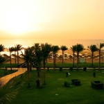 Sharm El Sheikh. Любимые отели.