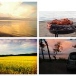 В поисках райских мест в Эстонии