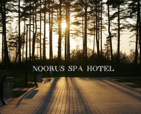 Noorus Spa Hotel special offer